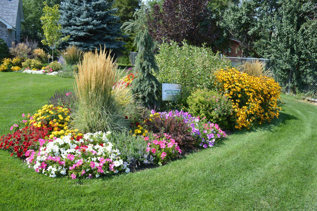 AllGarden Design And Landscaping